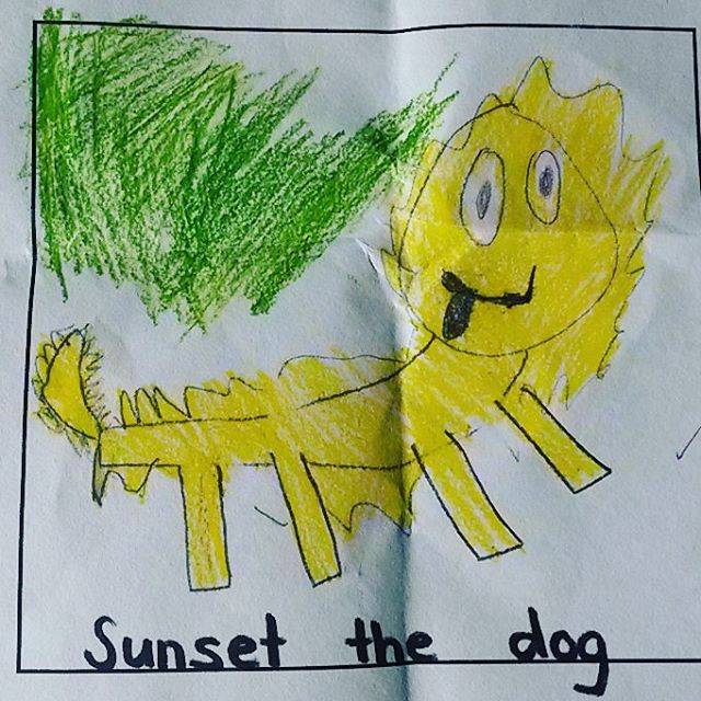 Floyds drawing of our beautiful scruffy dog Sunset he hashellip