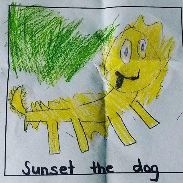 Floyds drawing of our beautiful scruffy dog Sunset he hashellip