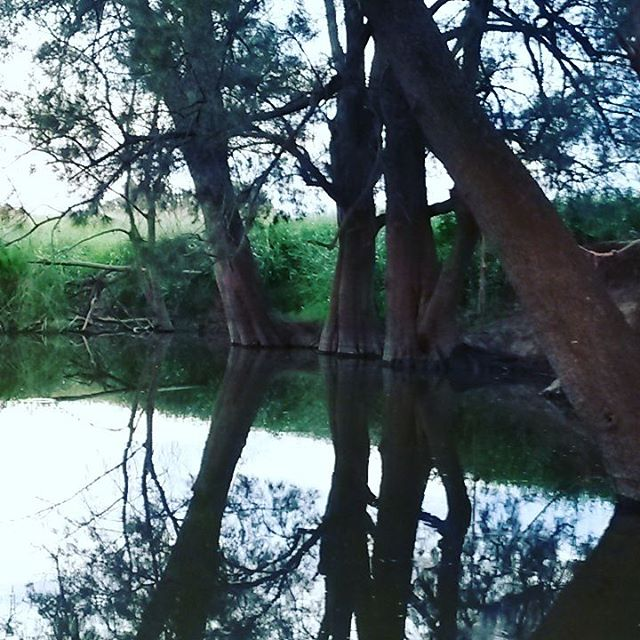 River escape full moon party heatwaveescape canowindra rosnayorganic fullmoon