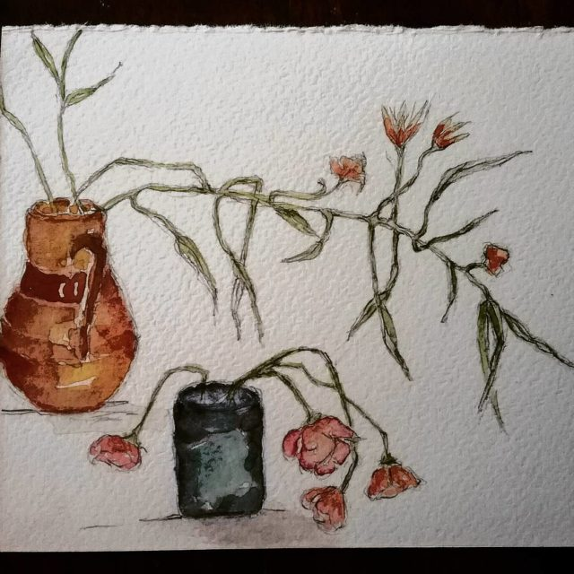 Sad little stars ageing gently and graciously dryingflowers rosnay watercoloursketch